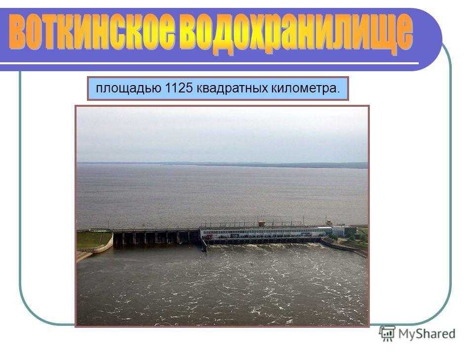 площадью 1125 квадратных километра.
