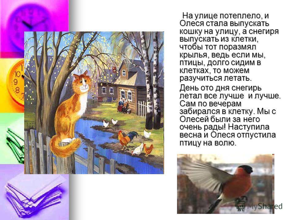 На улице потеплело, и Олеся стала выпускать кошку на улицу, а снегиря выпускать из клетки, чтобы тот поразмял крылья, ведь если мы, птицы, долго сидим в клетках, то можем разучиться летать. На улице потеплело, и Олеся стала выпускать кошку на улицу,