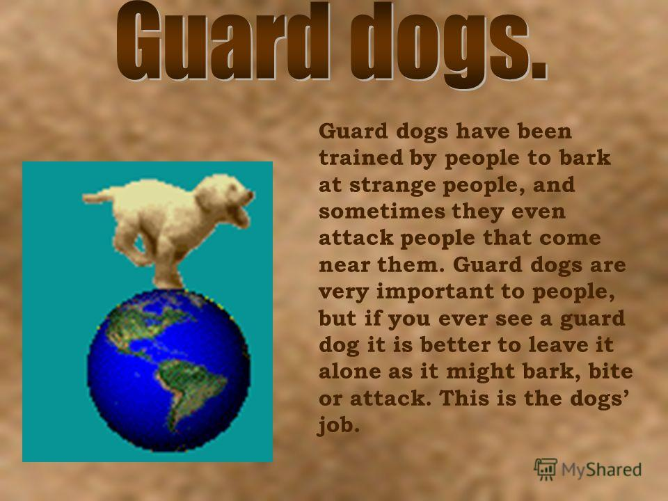 Guard dogs have been trained by people to bark at strange people, and sometimes they even attack people that come near them. Guard dogs are very important to people, but if you ever see a guard dog it is better to leave it alone as it might bark, bit