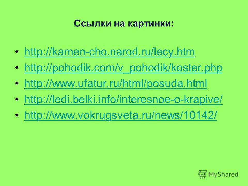 Ссылки на картинки: http://kamen-cho.narod.ru/lecy.htm http://pohodik.com/v_pohodik/koster.php http://www.ufatur.ru/html/posuda.html http://ledi.belki.info/interesnoe-o-krapive/ http://www.vokrugsveta.ru/news/10142/