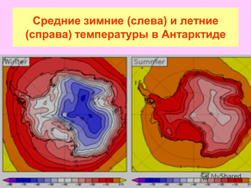 Средние зимние (слева) и летние (справа) температуры в Антарктиде
