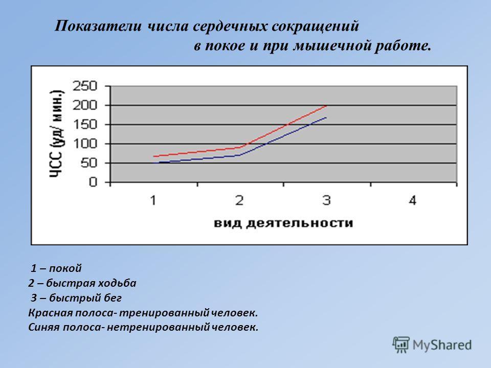 1 – покой 2 – быстрая ходьба 3 – быстрый бег Красная полоса- тренированный человек. Синяя полоса- нетренированный человек. Показатели числа сердечных сокращений в покое и при мышечной работе.