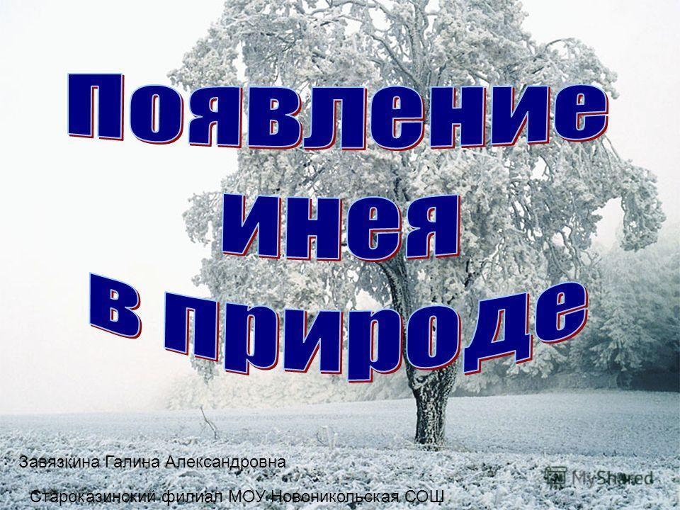 Завязкина Галина Александровна Староказинский филиал МОУ Новоникольская СОШ