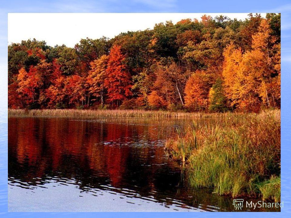 Пусты поля, Мокнет земля, День убывает. Когда это бывает? (Осенью)