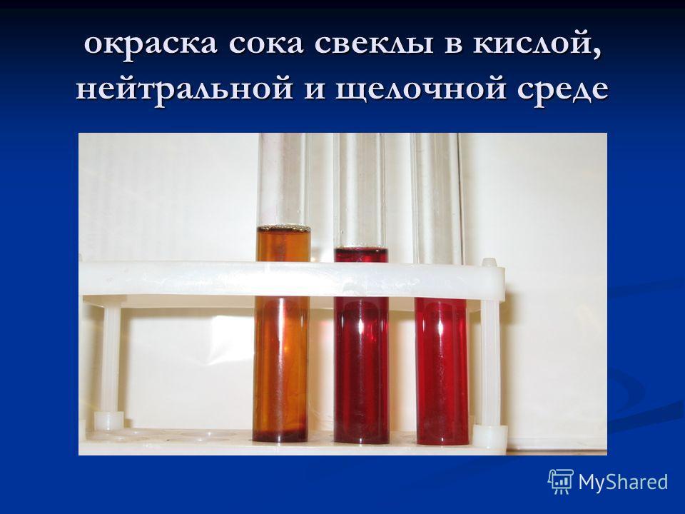 окраска сока свеклы в кислой, нейтральной и щелочной среде