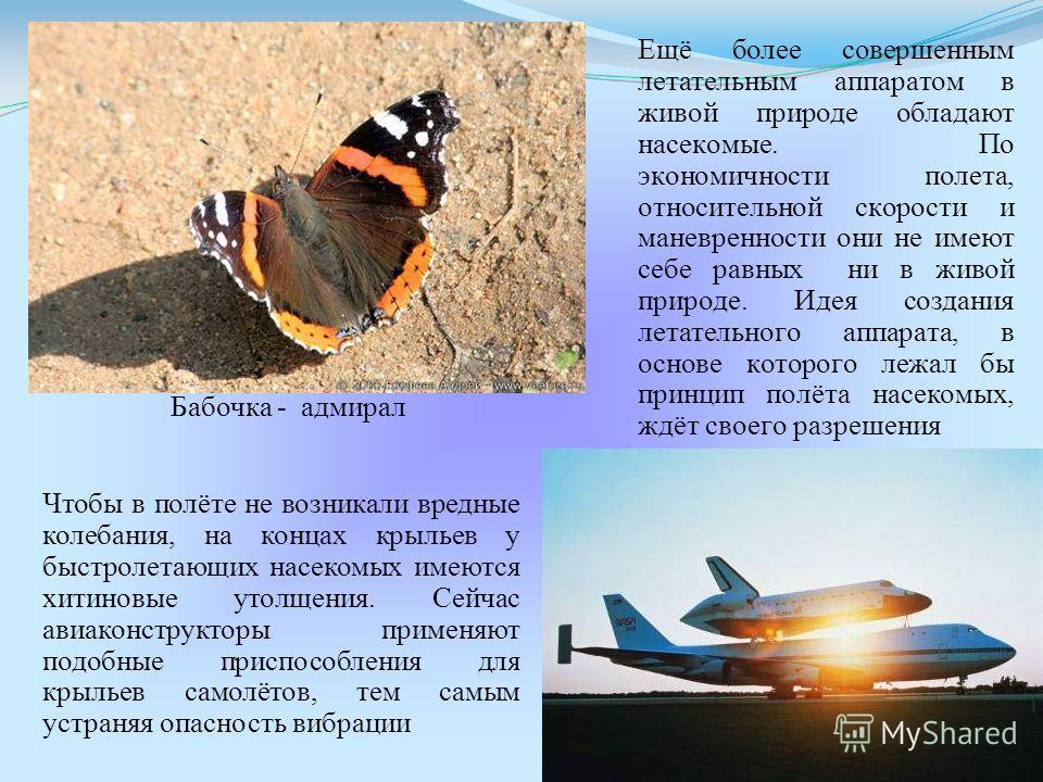 Ещё более совершенным летательным аппаратом в живой природе обладают насекомые. По экономичности полета, относительной скорости и маневренности они не имеют себе равных ни в живой природе. Идея создания летательного аппарата, в основе которого лежал