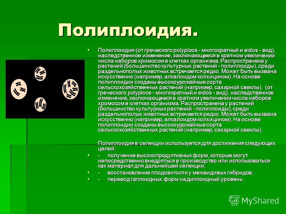 Полиплоидия. Полиплоидия. Полиплоидия-(от греческого polyploos - многократный и eidos - вид), наследственное изменение, заключающееся в кратном увеличении числа наборов хромосом в клетках организма. Распространена у растений (большинство культурных р