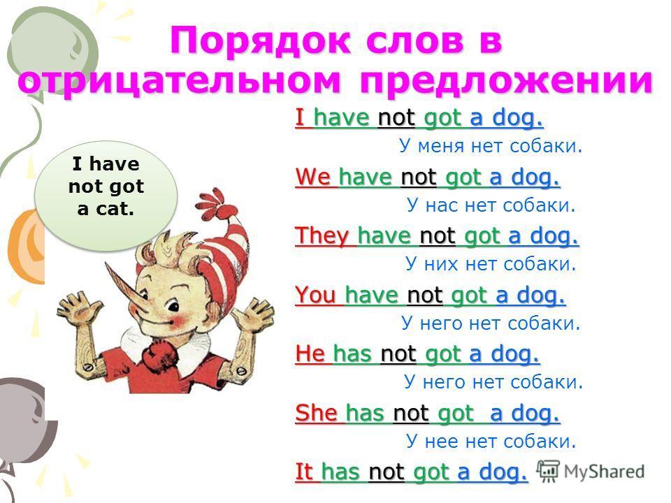 Порядок слов в отрицательном предложении I have not got a dog. У меня нет cобаки. We have not got a dog. У нас нет cобаки. They have not got a dog. У них нет cобаки. You have not got a dog. У него нет cобаки. He has not got a dog. У него нет cобаки.