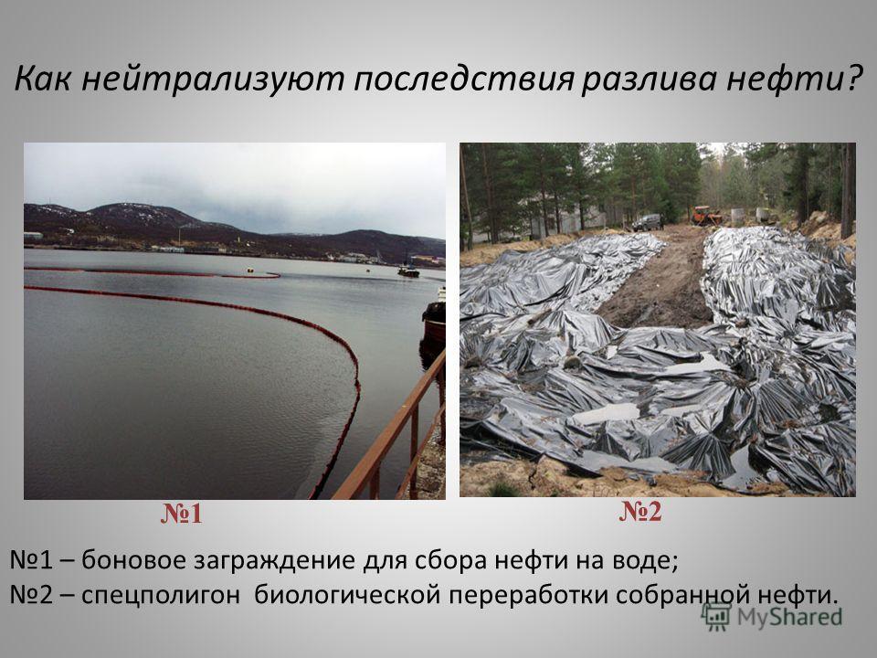 Как нейтрализуют последствия разлива нефти? 1 – боновое заграждение для сбора нефти на воде; 2 – спецполигон биологической переработки собранной нефти. 1 2
