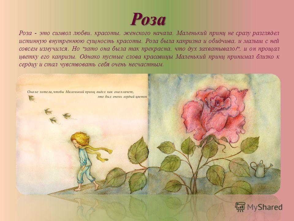 Роза Роза - это символ любви, красоты, женского начала. Маленький принц не сразу разглядел истинную внутреннюю сущность красоты. Роза была капризна и обидчива, и малыш с ней совсем измучился. Но