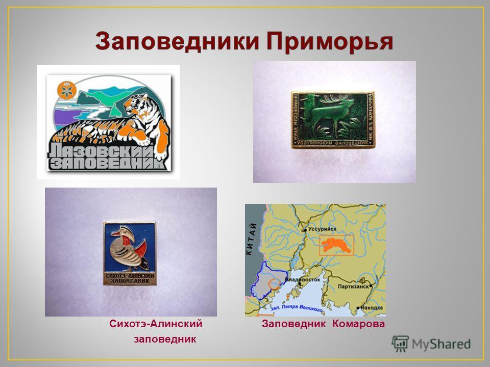 Всемирная экологическая организация Международный союз охраны природы Всемирный фонд дикой природы