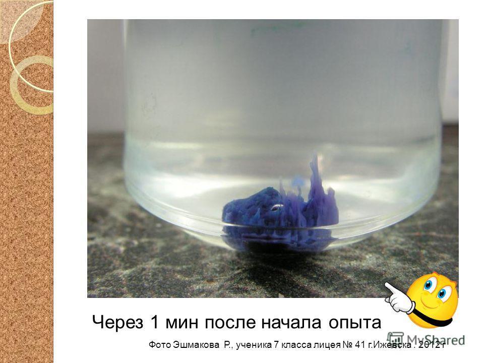 Через 1 мин после начала опыта Фото Эшмакова Р., ученика 7 класса лицея 41 г.Ижевска. 2012 г