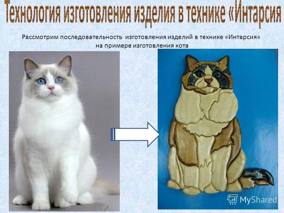 Рассмотрим последовательность изготовления изделий в технике «Интарсия» на примере изготовления кота