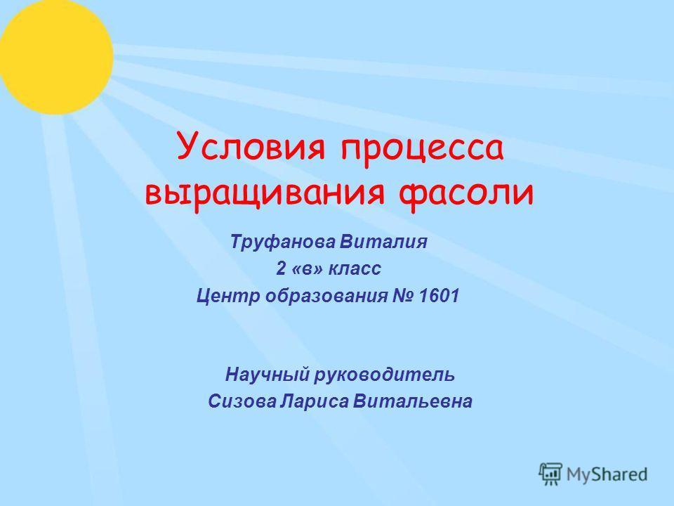 Условия процесса выращивания фасоли Труфанова Виталия 2 «в» класс Центр образования 1601 Научный руководитель Сизова Лариса Витальевна
