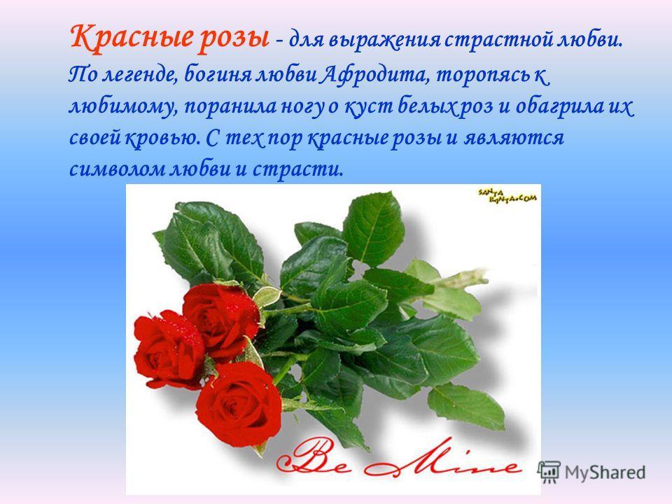 Красные розы - для выражения страстной любви. По легенде, богиня любви Афродита, торопясь к любимому, поранила ногу о куст белых роз и обагрила их своей кровью. С тех пор красные розы и являются символом любви и страсти.
