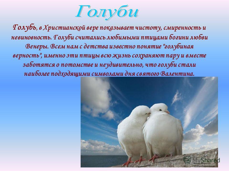 Голубь, в Христианской вере показывает чистоту, смиренность и невиновность. Голуби считались любимыми птицами богини любви Венеры. Всем нам с детства известно понятие