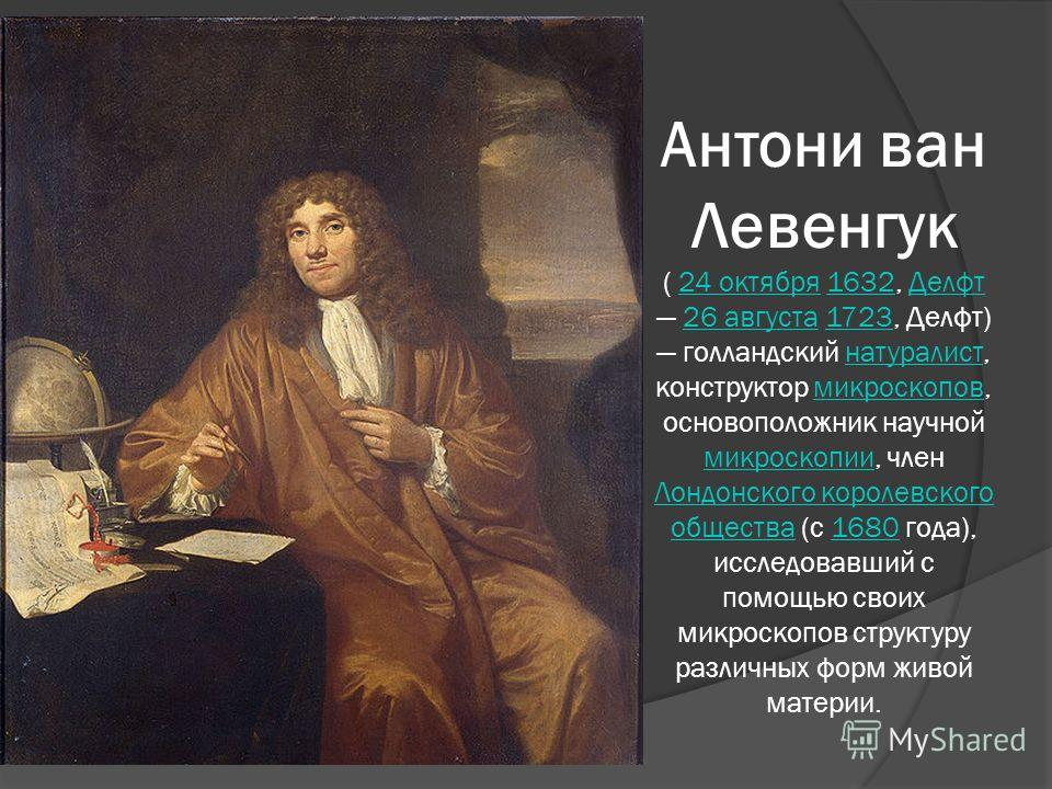 Антони ван Левенгук ( 24 октября 1632, Делфт 26 августа 1723, Делфт) голландский натуралист, конструктор микроскопов, основоположник научной микроскопии, член Лондонского королевского общества (с 1680 года), исследовавший с помощью своих микроскопов