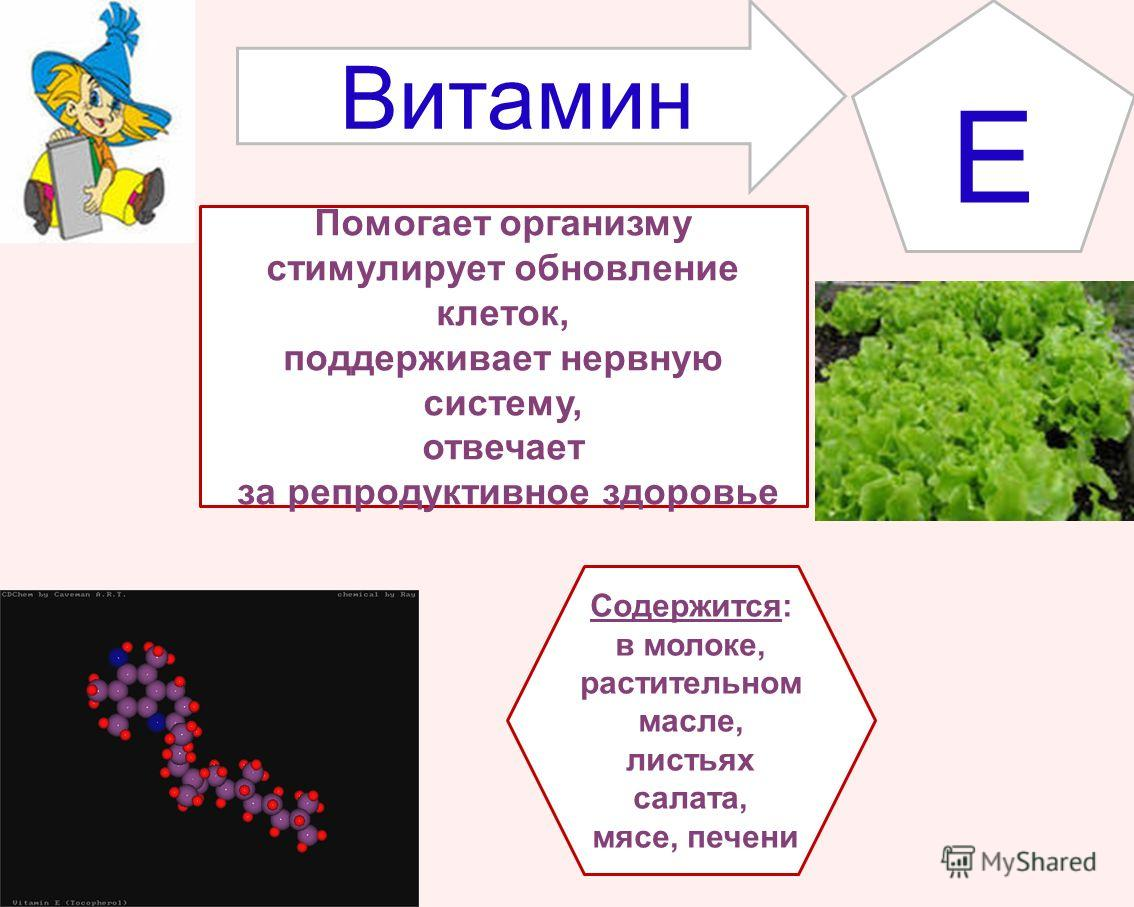 E Содержится: в молоке, растительном масле, листьях салата, мясе, печени Помогает организму стимулирует обновление клеток, поддерживает нервную систему, отвечает за репродуктивное здоровье Витамин