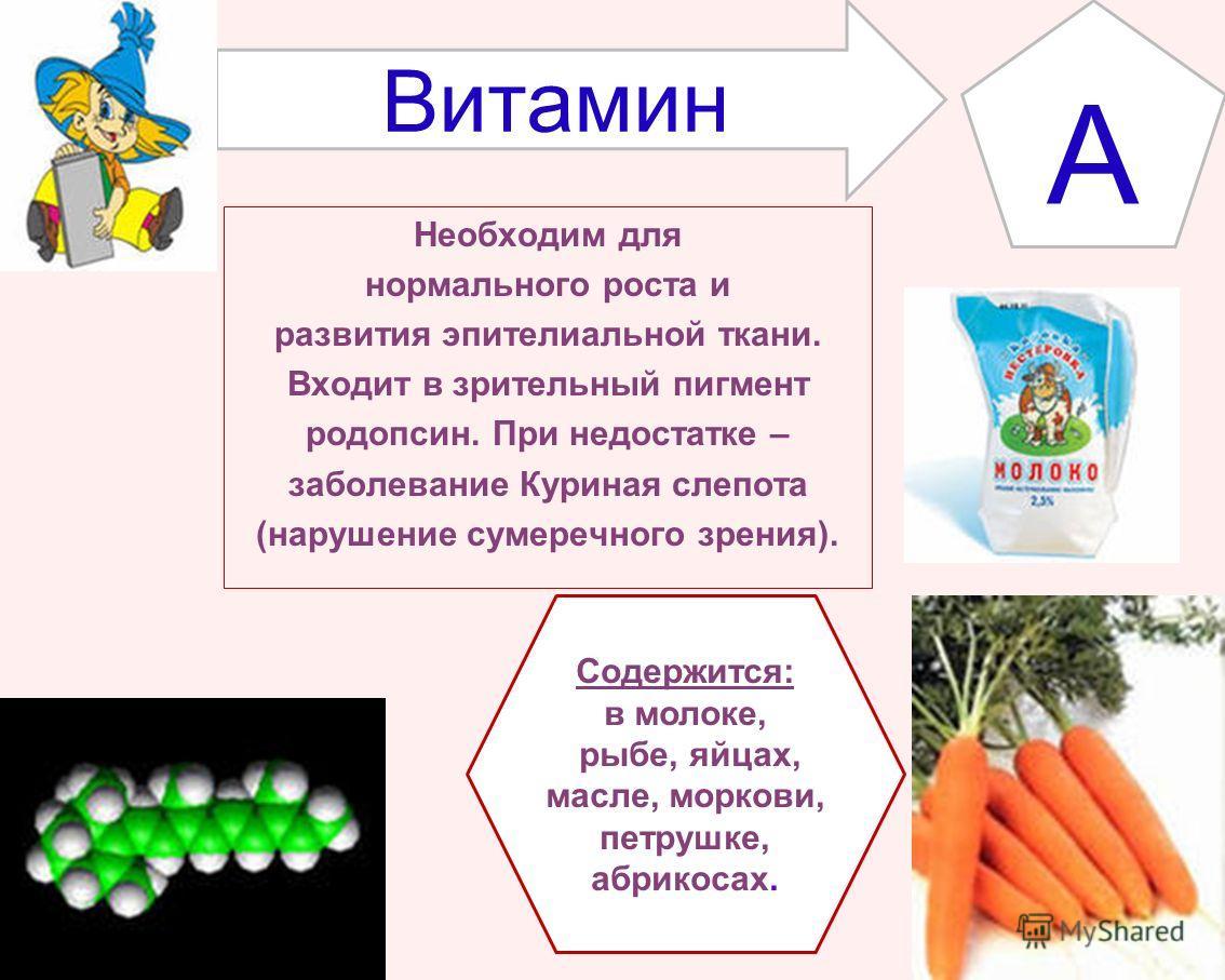 Необходим для нормального роста и развития эпителиальной ткани. Входит в зрительный пигмент родопсин. При недостатке – заболевание Куриная слепота (нарушение сумеречного зрения). Витамин А Содержится: в молоке, рыбе, яйцах, масле, моркови, петрушке,