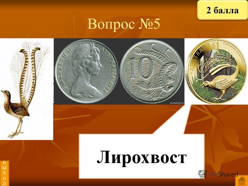 Вопрос 5 Птица, изображённая на австралийских монетах? Австралийцы считают их своей национальной гордостью. Лирохвост выходвыход 2 балла