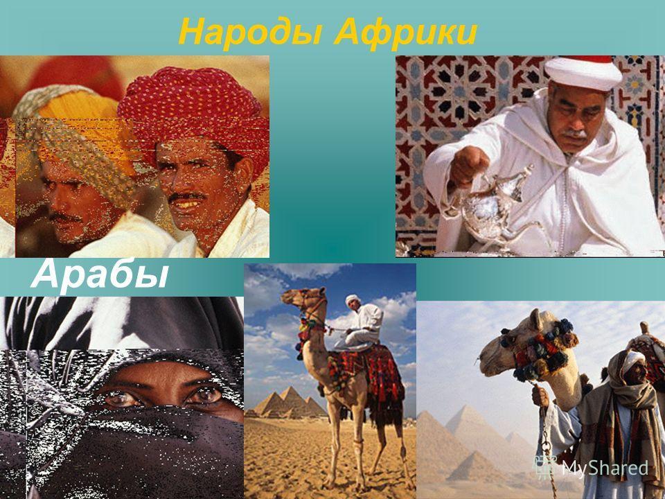 Арабы Народы Африки
