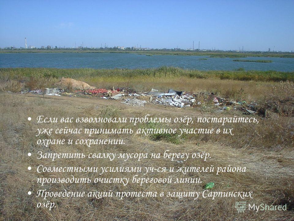 Если вас взволновали проблемы озёр, постарайтесь, уже сейчас принимать активное участие в их охране и сохранении. Запретить свалку мусора на берегу озёр. Совместными усилиями уч-ся и жителей района производить очистку береговой линии. Проведение акци