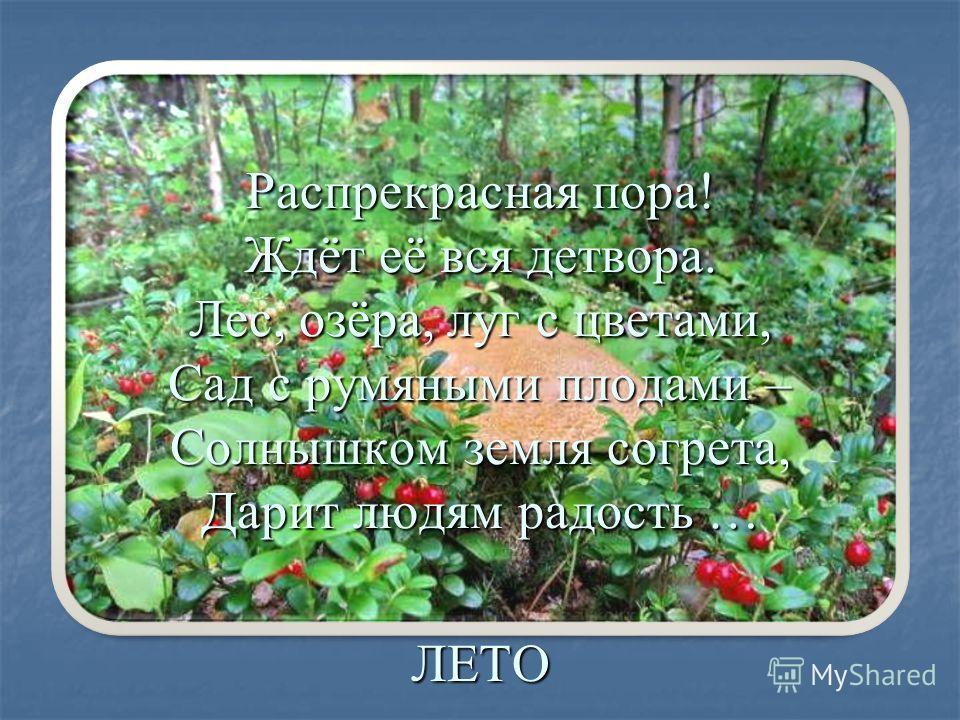 Распрекрасная пора! Ждёт её вся детвора. Лес, озёра, луг с цветами, Сад с румяными плодами – Солнышком земля согрета, Дарит людям радость … ЛЕТО