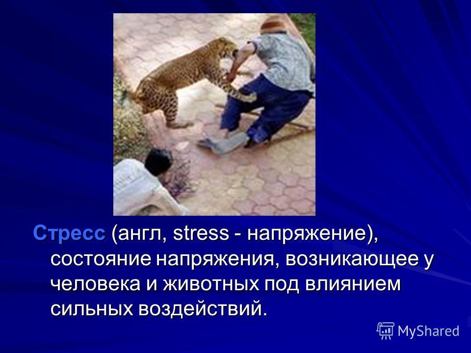 Стресс (англ, stress - напряжение), состояние напряжения, возникающее у человека и животных под влиянием сильных воздействий.