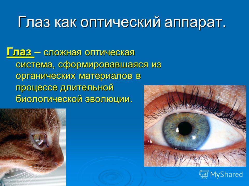Глаз как оптический аппарат. Глаз – сложная оптическая система, сформировавшаяся из органических материалов в процессе длительной биологической эволюции.