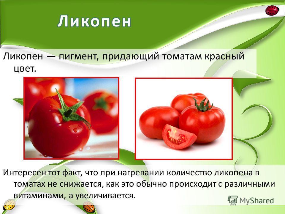 Ликопен пигмент, придающий томатам красный цвет. Интересен тот факт, что при нагревании количество ликопена в томатах не снижается, как это обычно происходит с различными витаминами, а увеличивается.