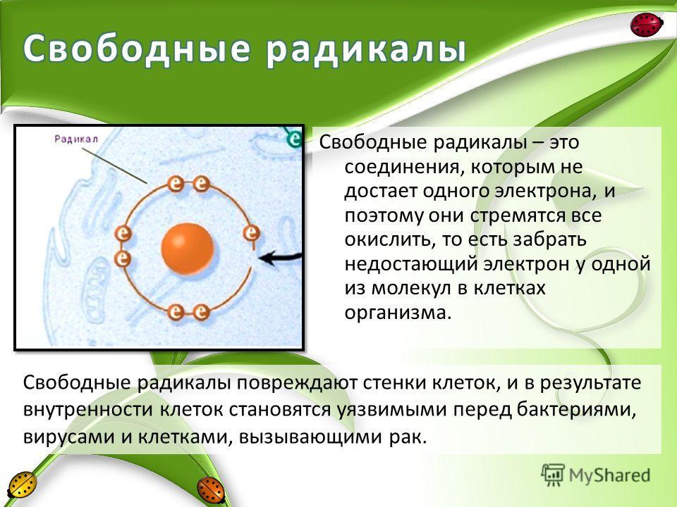 Свободные радикалы – это соединения, которым не достает одного электрона, и поэтому они стремятся все окислить, то есть забрать недостающий электрон у одной из молекул в клетках организма. Свободные радикалы повреждают стенки клеток, и в результате в