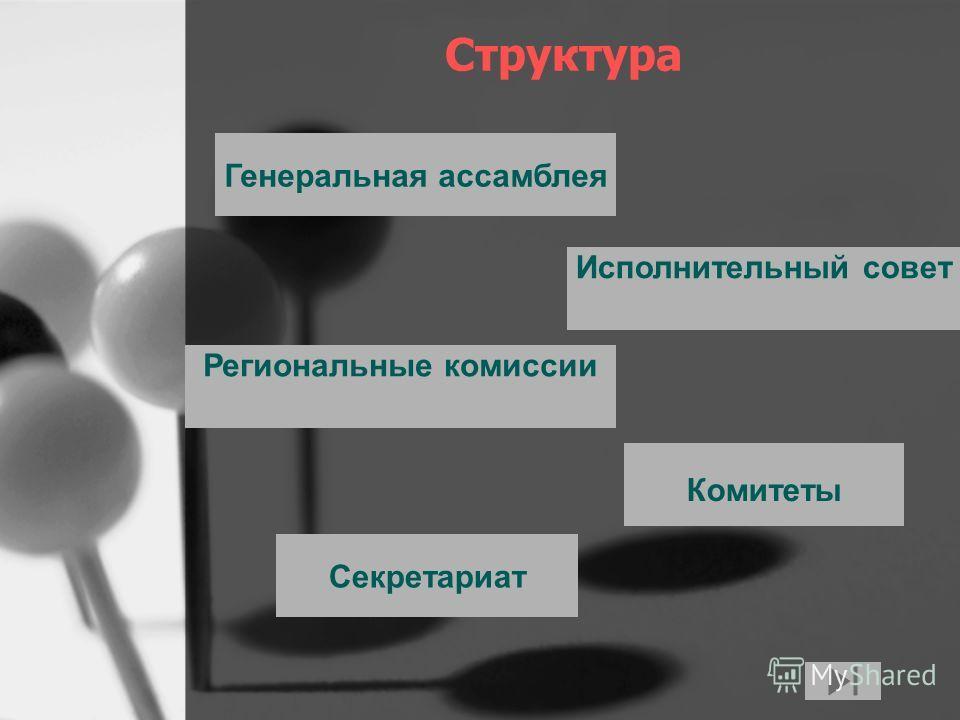 Украина член всемирной туристской организации