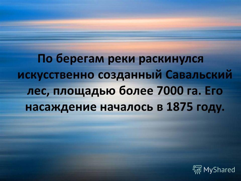 По берегам реки раскинулся искусственно созданный Савальский лес, площадью более 7000 га. Его насаждение началось в 1875 году.