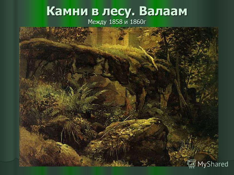 Камни в лесу. Валаам Между 1858 и 1860г