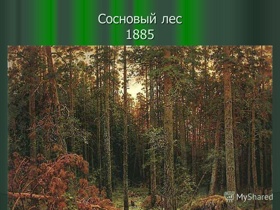 Сосновый лес 1885