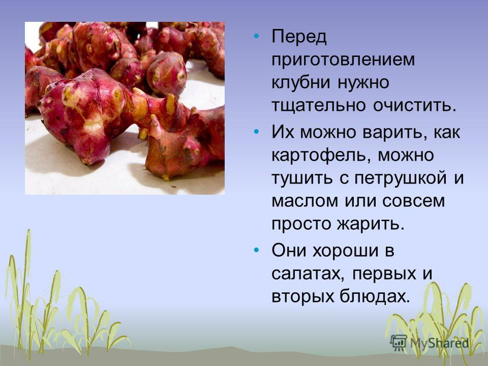 Перед приготовлением клубни нужно тщательно очистить. Их можно варить, как картофель, можно тушить с петрушкой и маслом или совсем просто жарить. Они хороши в салатах, первых и вторых блюдах.