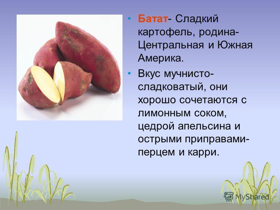Батат- Сладкий картофель, родина- Центральная и Южная Америка. Вкус мучнисто- сладковатый, они хорошо сочетаются с лимонным соком, цедрой апельсина и острыми приправами- перцем и карри.
