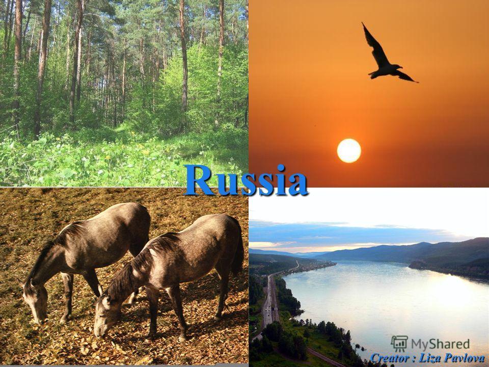 Creator : Liza Pavlova Russia