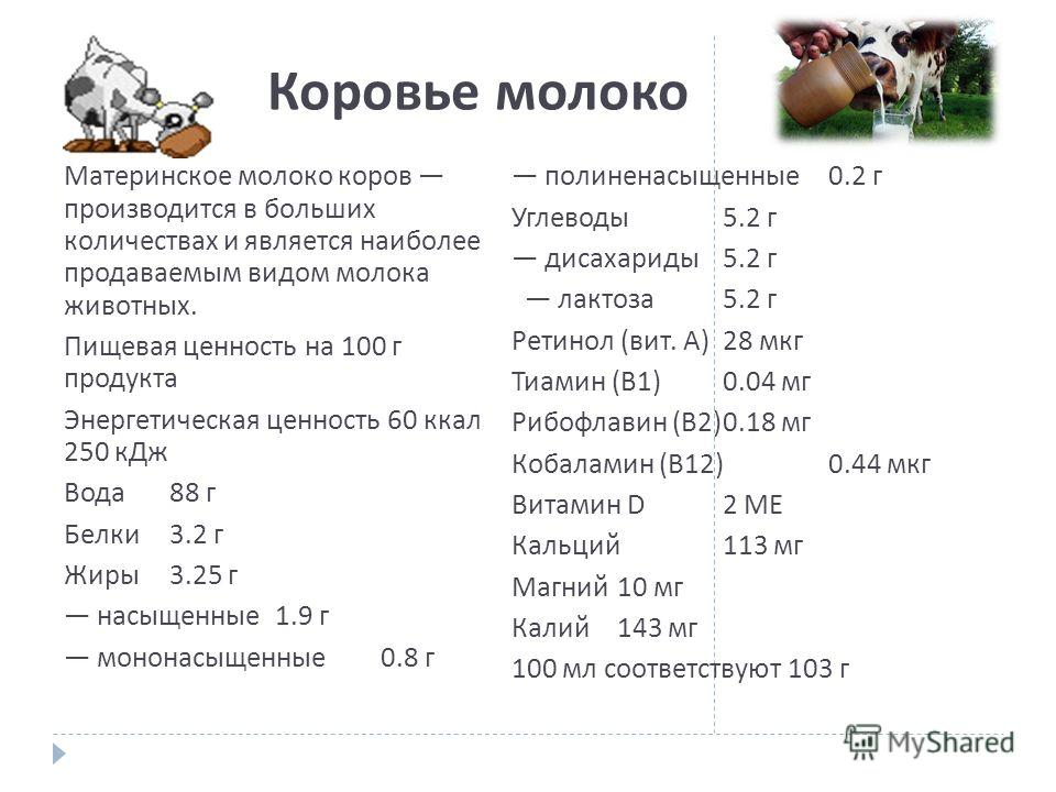 Коровье молоко Материнское молоко коров производится в больших количествах и является наиболее продаваемым видом молока животных. Пищевая ценность на 100 г продукта Энергетическая ценность 60 ккал 250 кДж Вода 88 г Белки 3.2 г Жиры 3.25 г насыщенные