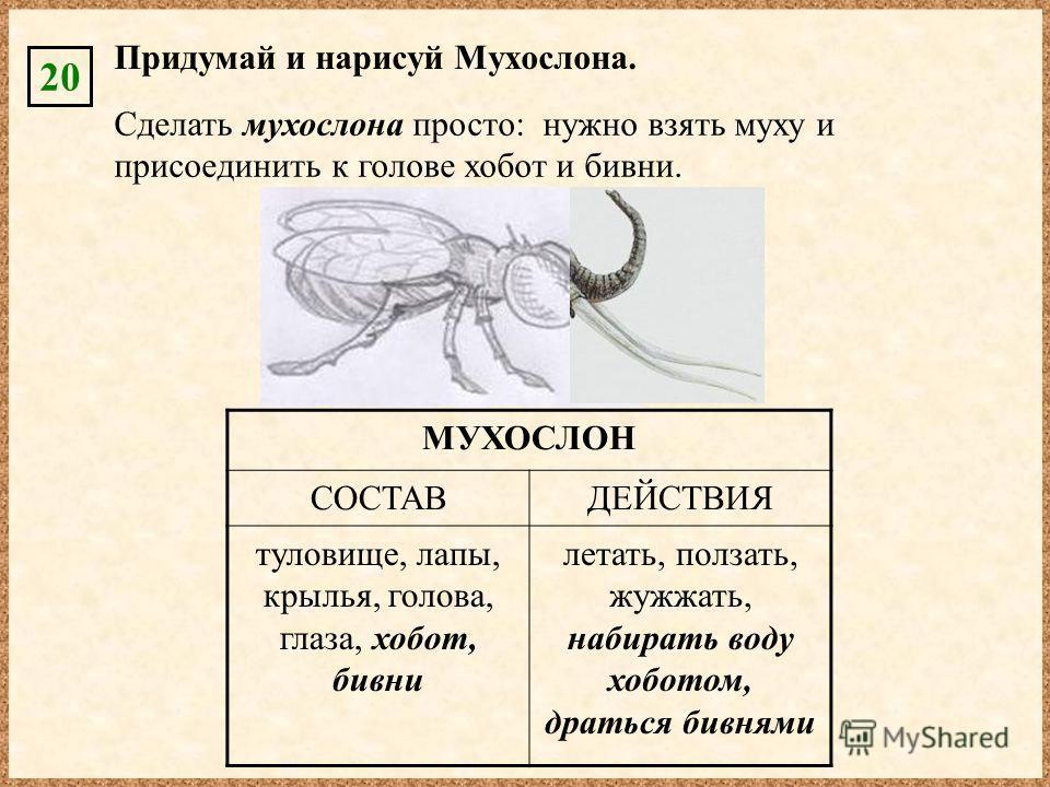 МУХОСЛОН СОСТАВДЕЙСТВИЯ туловище, лапы, крылья, голова, глаза, хобот, бивни летать, ползать, жужжать, набирать воду хоботом, драться бивнями Придумай и нарисуй Мухослона. 20 Сделать мухослона просто: нужно взять муху и присоединить к голове хобот и б