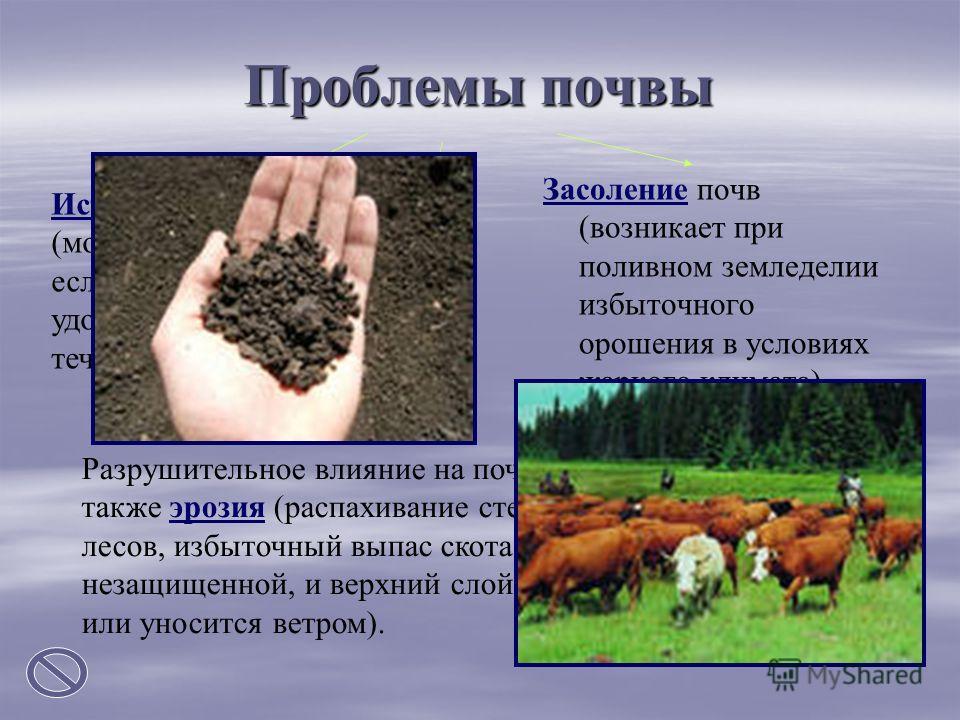 Проблемы почвы Разрушительное влияние на почву оказывает также эрозия (распахивание степей, уничтожение лесов, избыточный выпас скота делают почву незащищенной, и верхний слой смывается водой или уносится ветром). Истощение почвы (может произойти, ес