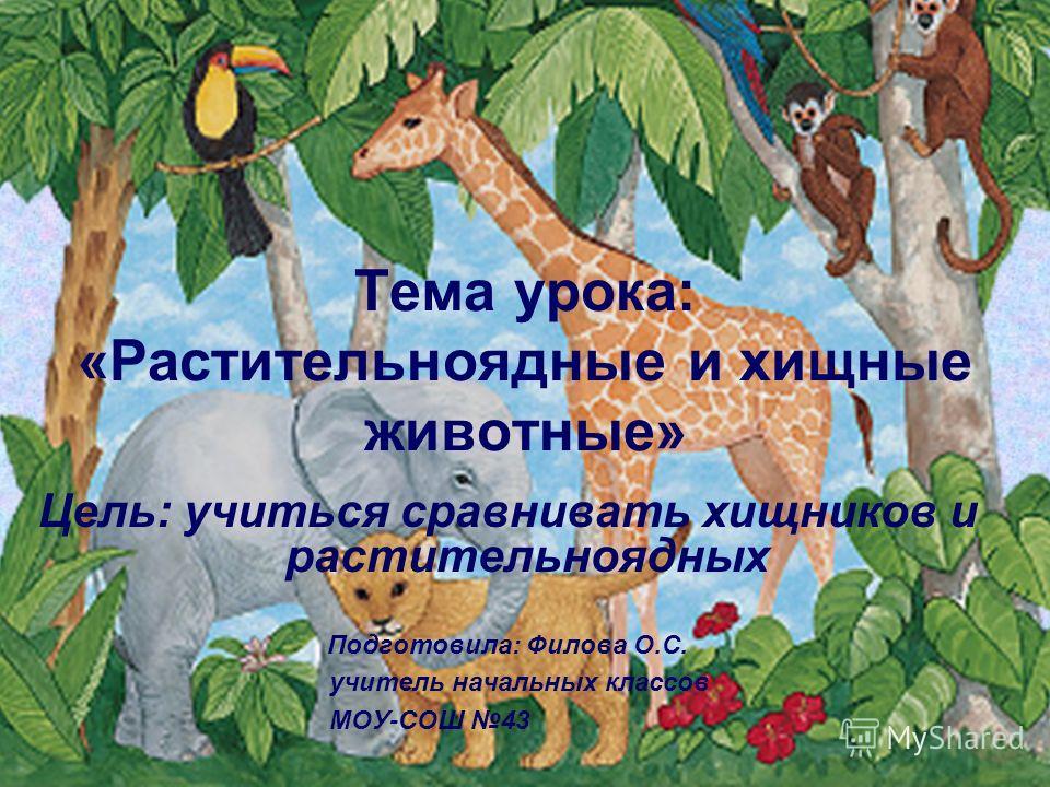 Тема урока: «Растительноядные и хищные животные» Цель: учиться сравнивать хищников и растительноядных Подготовила: Филова О.С. учитель начальных классов МОУ-СОШ 43