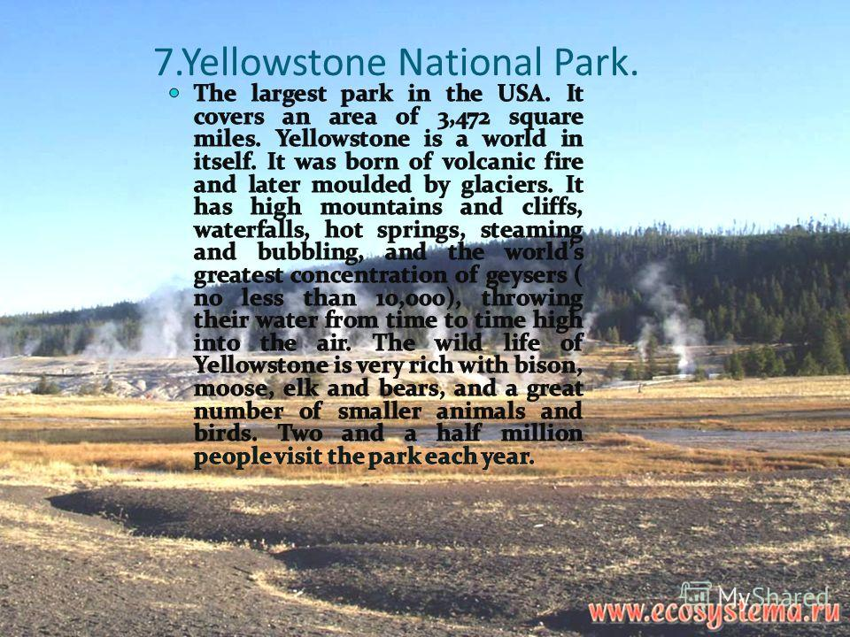 7.Yellowstone National Park.