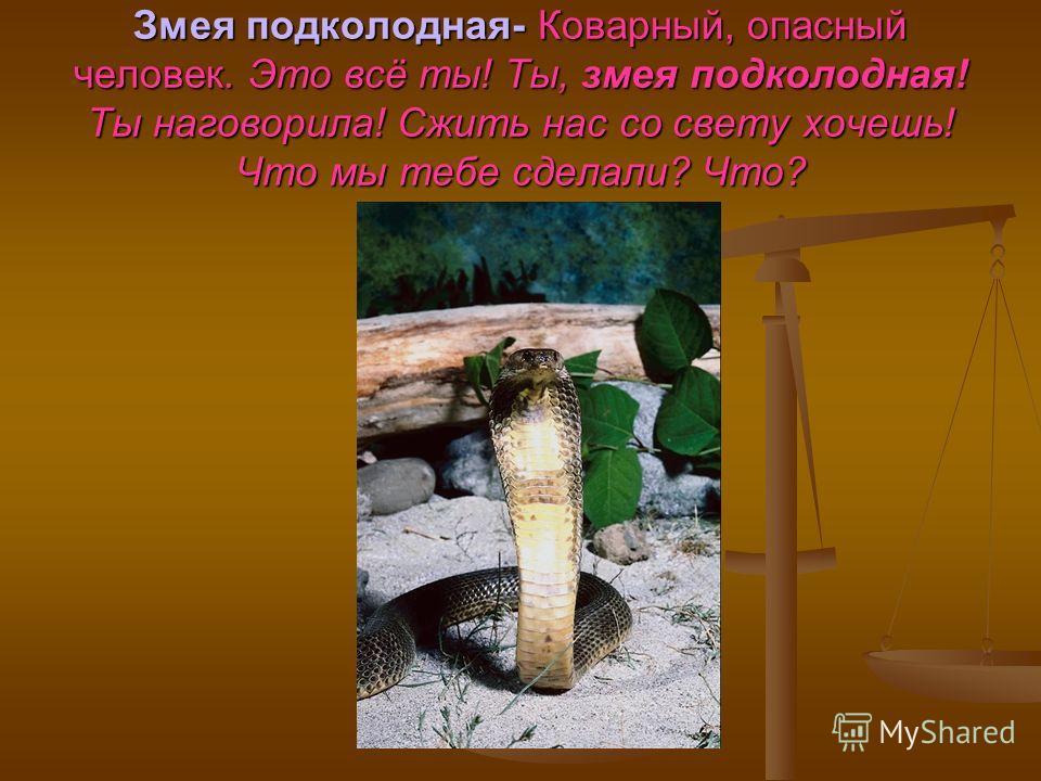 Змея подколодная- Коварный, опасный человек. Это всё ты! Ты, змея подколодная! Ты наговорила! Сжить нас со свету хочешь! Что мы тебе сделали? Что?
