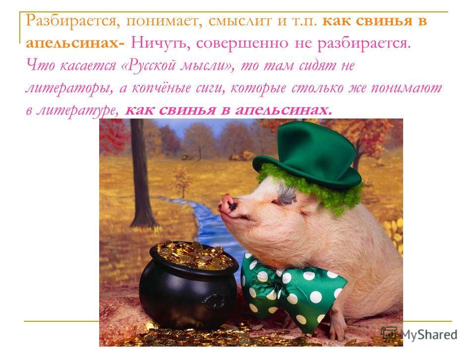 Разбирается, понимает, смыслит и т.п. как свинья в апельсинах- Ничуть, совершенно не разбирается. Что касается «Русской мысли», то там сидят не литераторы, а копчёные сиги, которые столько же понимают в литературе, как свинья в апельсинах.