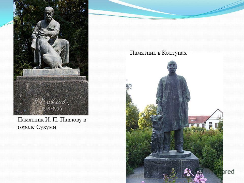 Памятник И. П. Павлову в городе Сухуми Памятник в Колтунах