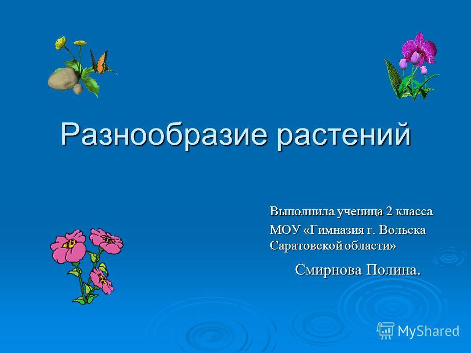Разнообразие растений Выполнила ученица 2 класса МОУ «Гимназия г. Вольска Саратовской области» Смирнова Полина.