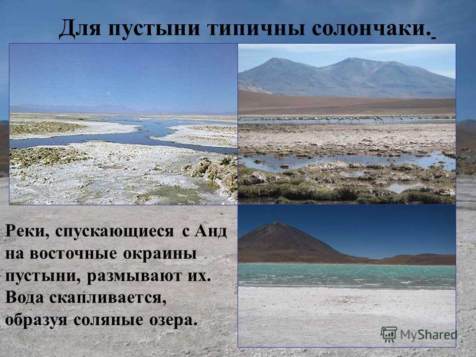 Для пустыни типичны солончаки. Реки, спускающиеся с Анд на восточные окраины пустыни, размывают их. Вода скапливается, образуя соляные озера.