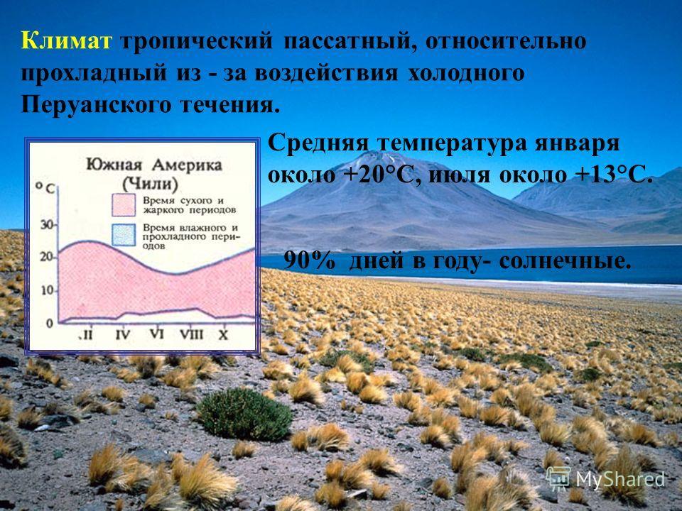 Климат тропический пассатный, относительно прохладный из - за воздействия холодного Перуанского течения. Средняя температура января около +20°C, июля около +13°C. 90% дней в году- солнечные.