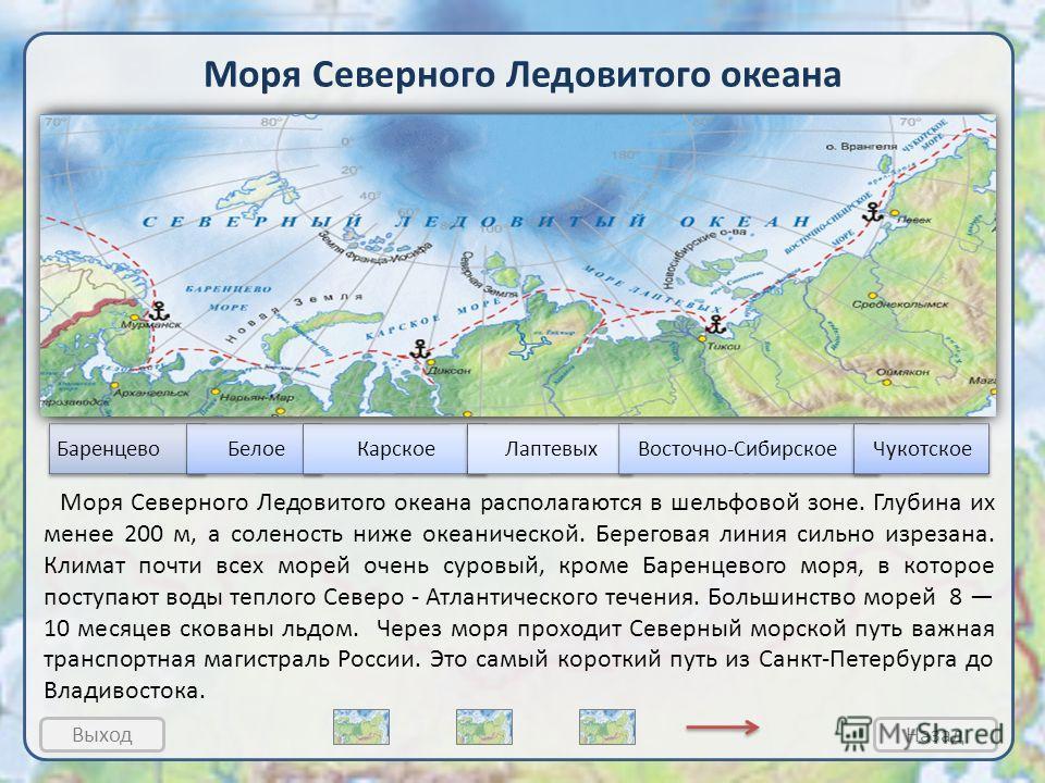 1 Моря Северного Ледовитого океана Баренцево море Карское море Море Лаптевых Чукотское море Восточно – Сибирское море Северный Ледовитый океан 1.Белое море Моря Северного Ледовитого океана располагаются в шельфовой зоне. Глубина их менее 200 м, а сол